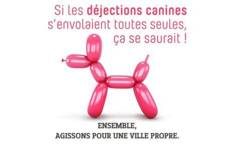 Campagne Propreté déjections canines Brignais